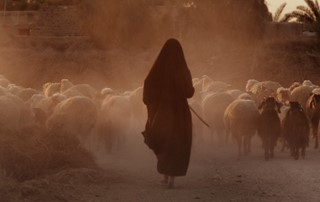 The Silence Of The Shepherd